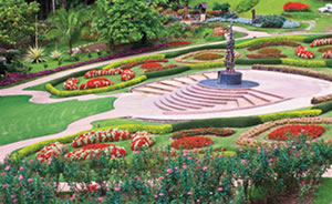 Botanical Garden Tours